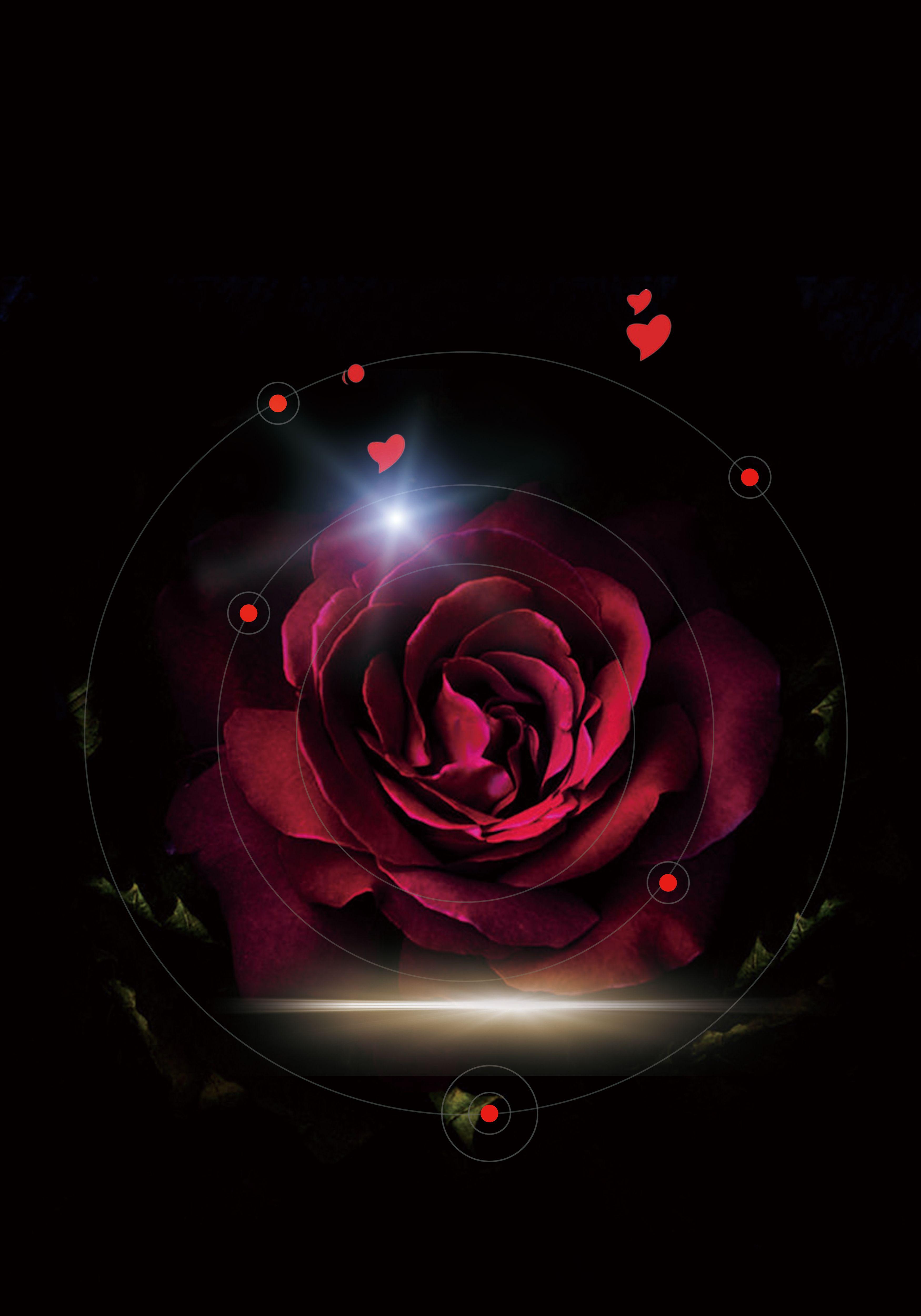 Fantasy Rose Black Background Black Background Wallpaper Red And Black Wallpaper Black Background Images Flower wallpapers full hd fantasy