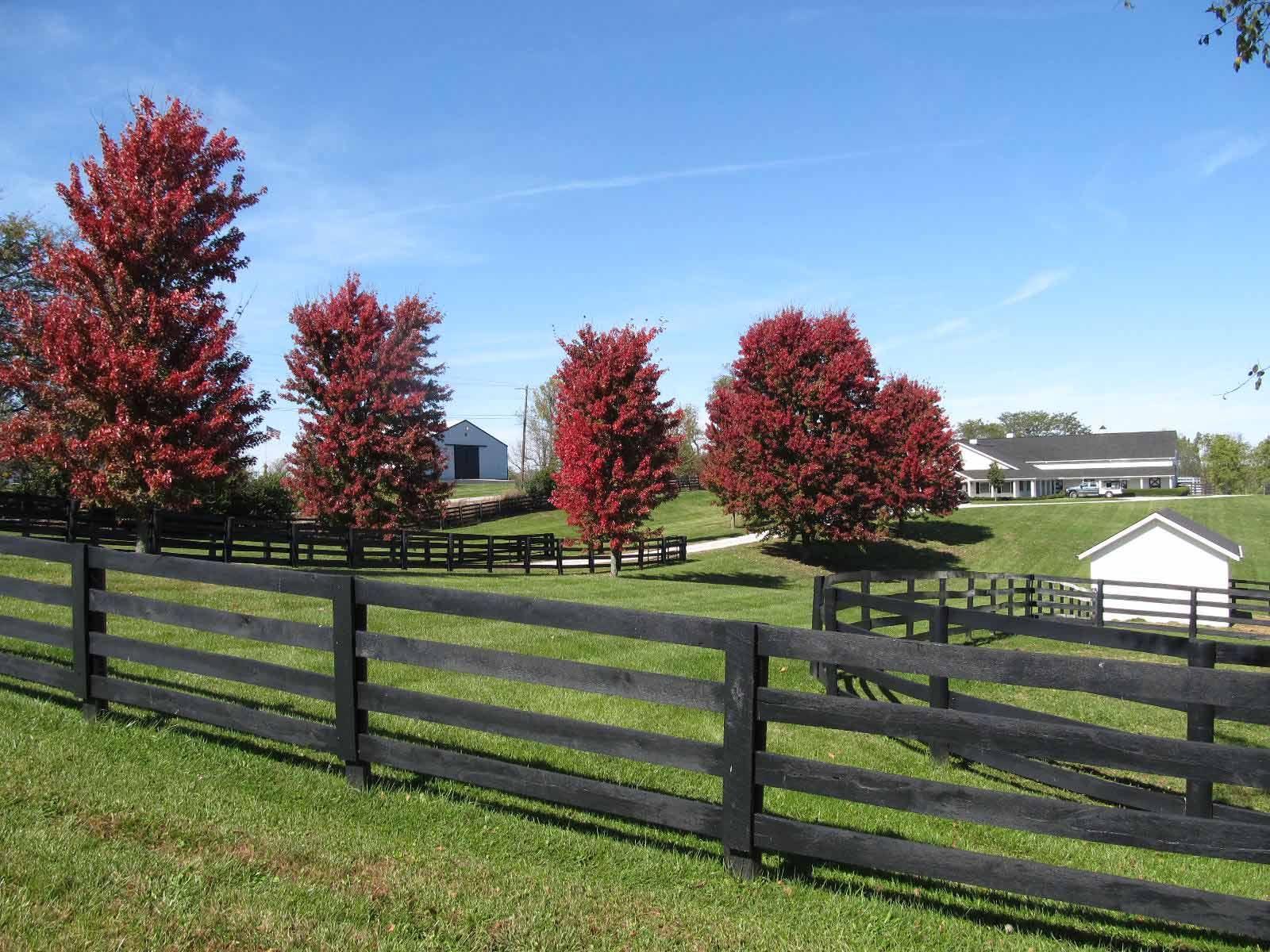 best 25 farm fence ideas on pinterest