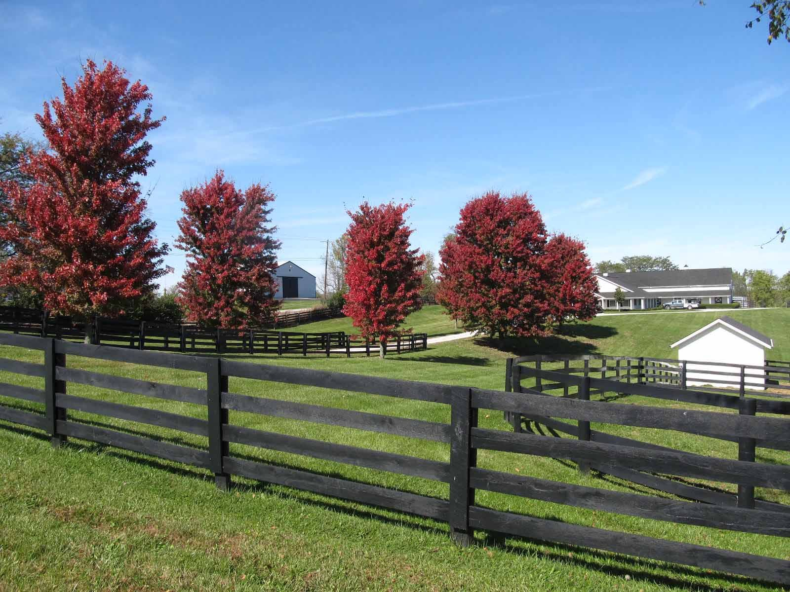 Farm Fencing Ideas Google Search Exterior Farm Fence