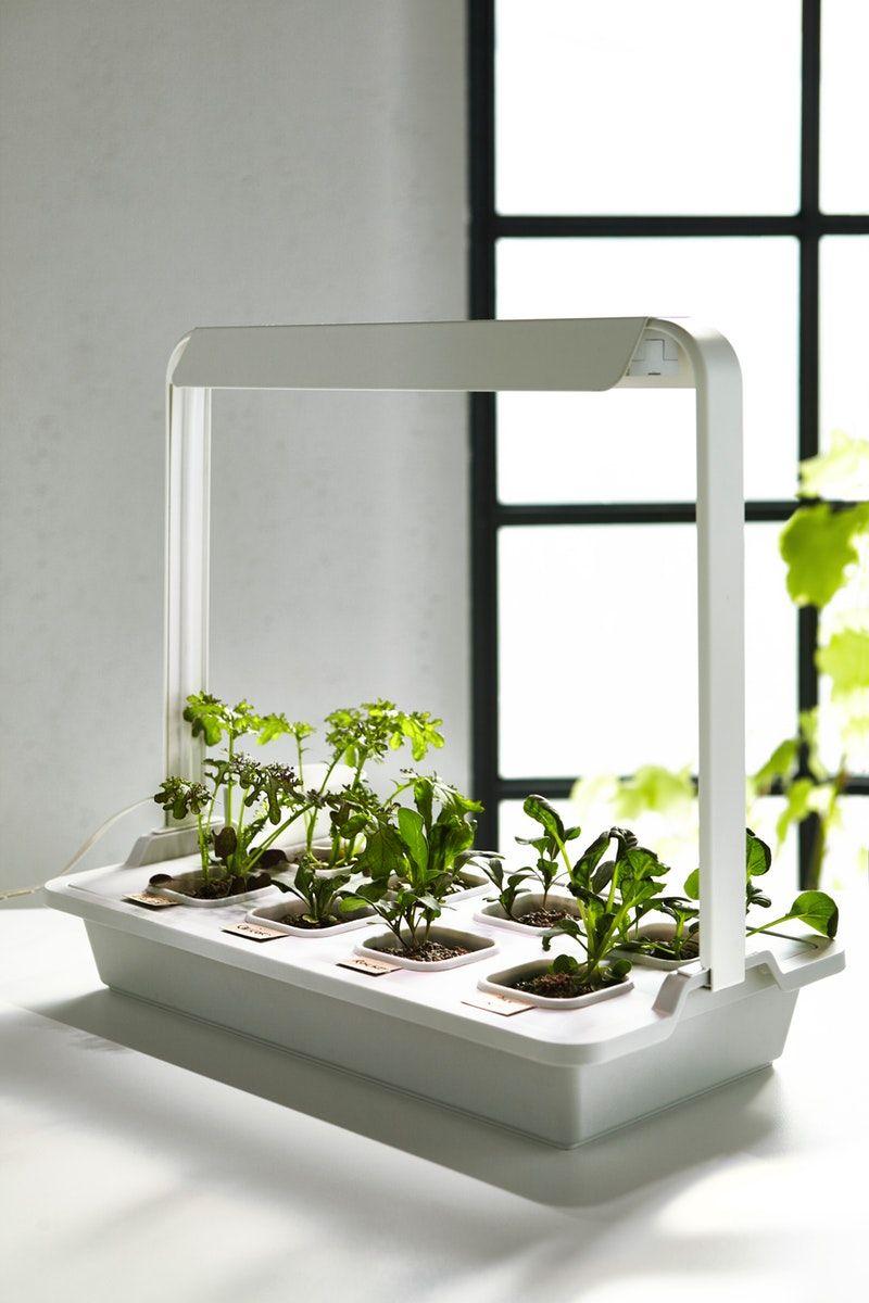 Vaxer Pflanzenbeleuchtung Led Silberfarben Ikea Deutschland In 2020 Pflanzenbeleuchtung Led Und Beleuchtung