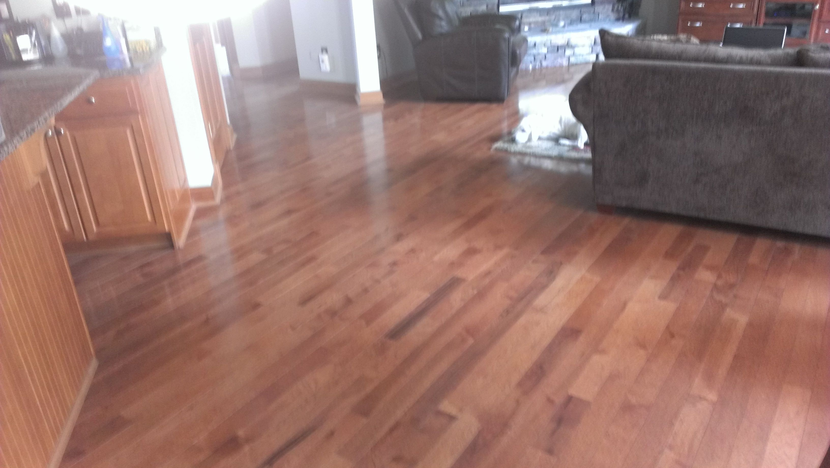 Pin By Home Based Carpet Flooring Llc On Flooring For