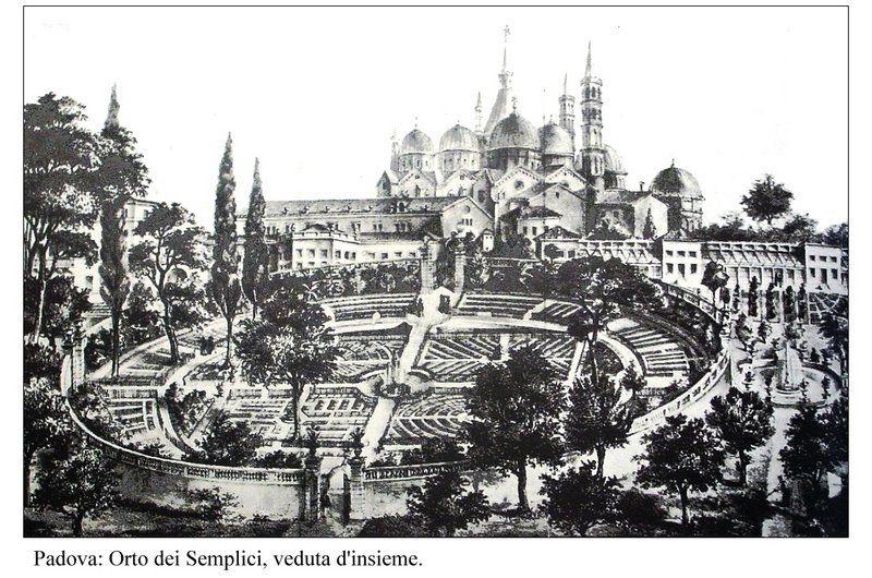 O Jardín Botánico de Padua (u Orto dei Semplici); al fondo, la Basílica de San Antonio.