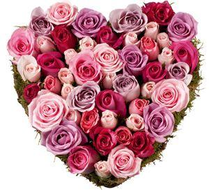Coeur De Roses Hearts Pinterest Flowers And Plants