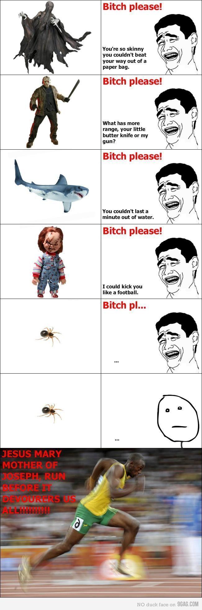 Diese Spinnen-Meme bringen mich immer um. – Carola