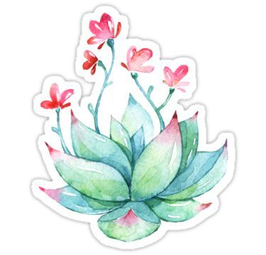 Watercolor Succulent Sticker Sticker Aesthetic Stickers