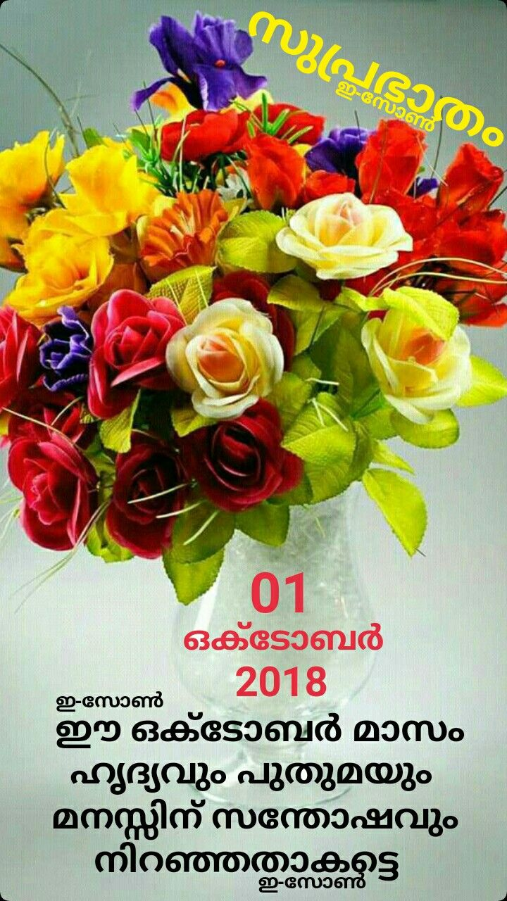 Pin By Eron On New Months Malayalam Pinterest Flowers