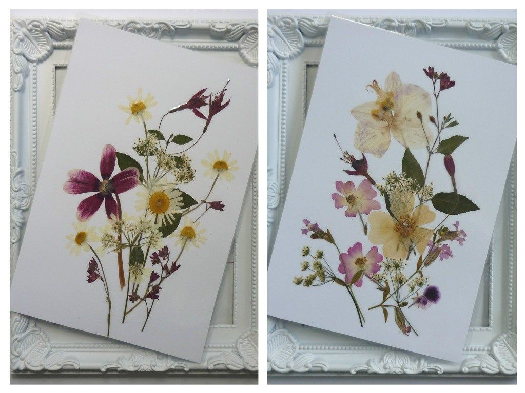 Pressed Flowers Art Dried Flowers Art Pressed Flowers Decor Valentine S Day Art Orchid Art Herbarium Easte In 2020 Pressed Flower Art Flower Art Floral Artwork