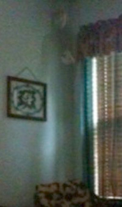 Ghost In The Corner: A Picture Uploaded To A Forum By Someone Named Gail.