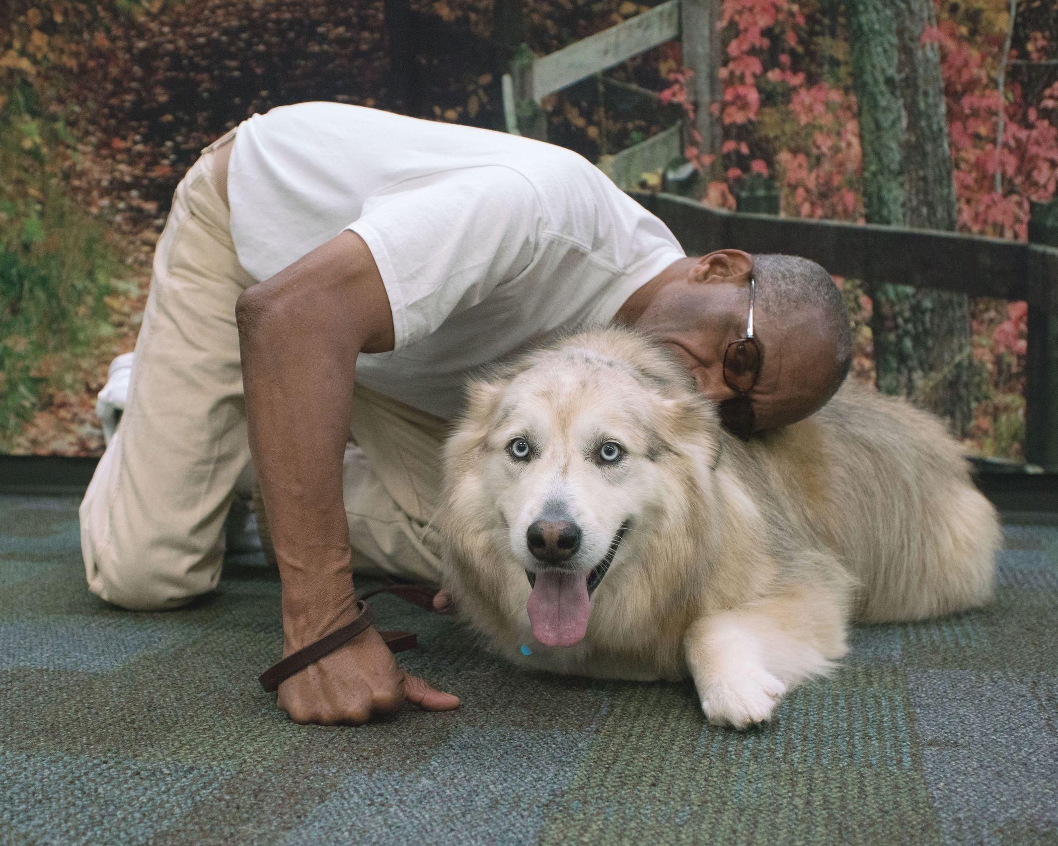 Clallam Bay Inmates Reunite With Reformed Dogs Dogs Pup Animal