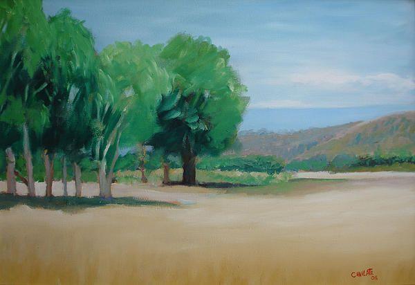 Landscape at Montelimar