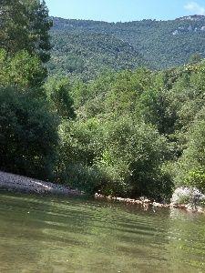 Riu La Muga a Albany  Costa Brava i Girona  Website y River