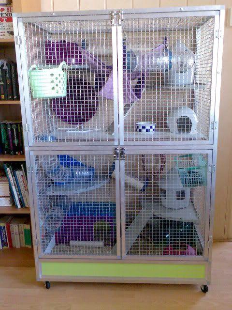 Savic Suite Royal Xl Google Suche Ferret Cage Chinchilla Cage Rats