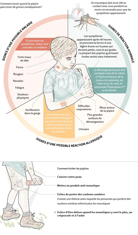 Comment savoir si une piqûre de moustique est plus grave qu'elle n'y paraît?   – Santé et bien-être
