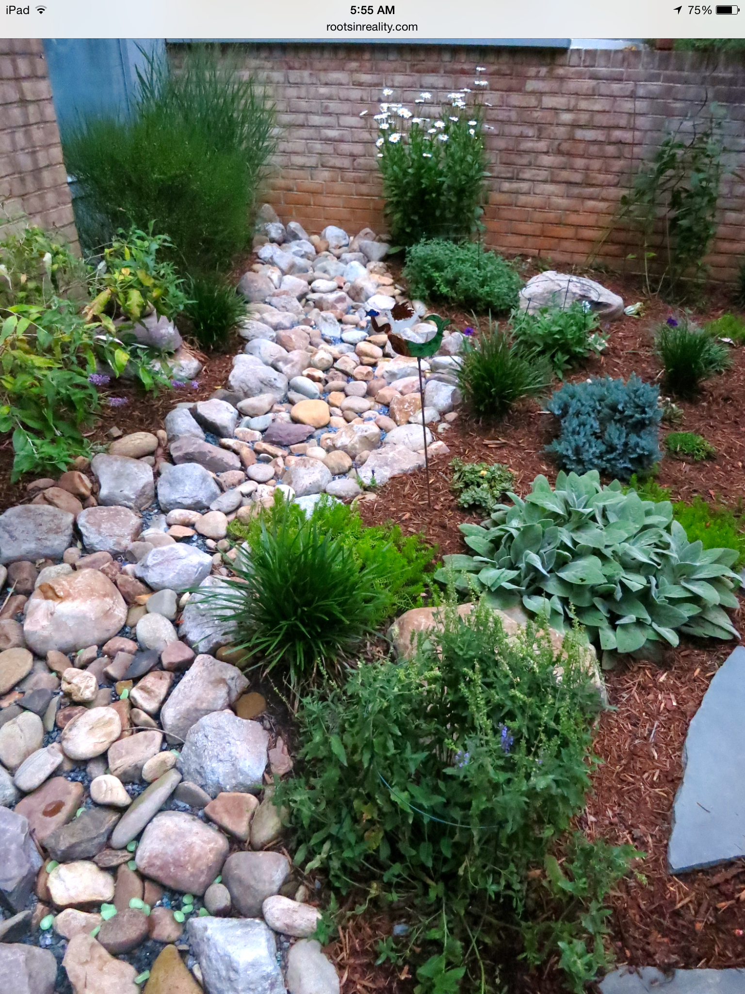 Pin by Dominique Yates on Dry Creekbeds Outdoor gardens