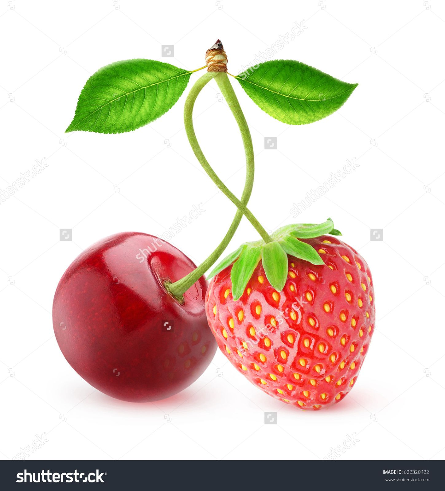 Isolated berries sweet cherry and strawberry fruits on