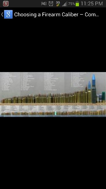 Ammo size