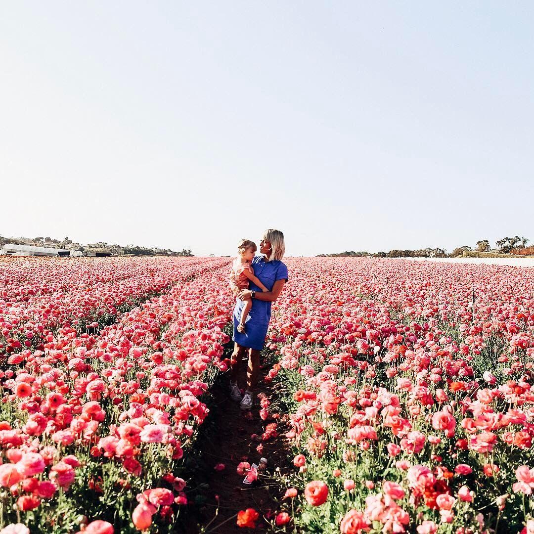 Mama in bloom at the Carlsbad flower fields | MOTHERHOOD | Pinterest ...