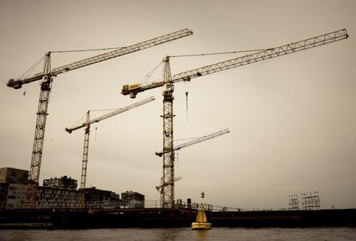 I love seeing cranes.