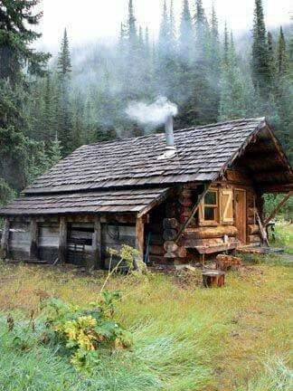 Log Cabin Surrounded By Forest Cabins In The Woods Log Cabin Homes Rustic Cabin