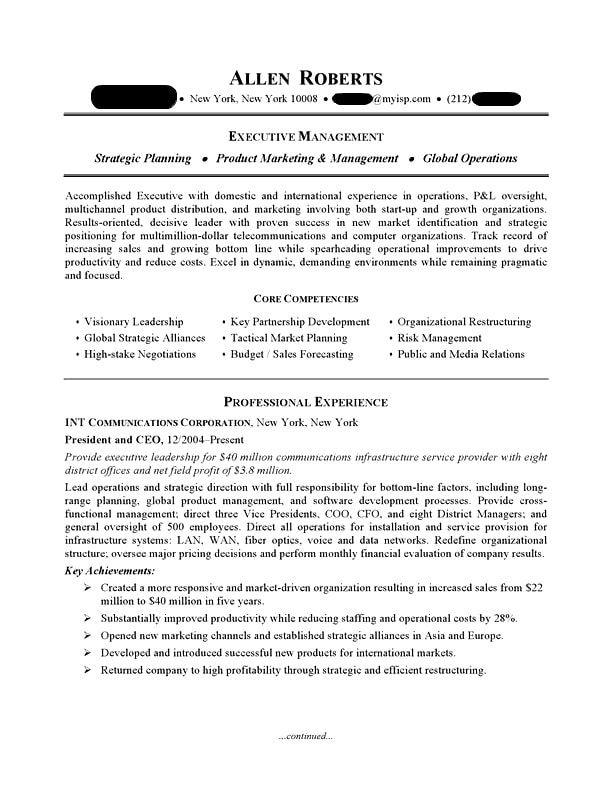 ceo  executive resume sample  professional resume