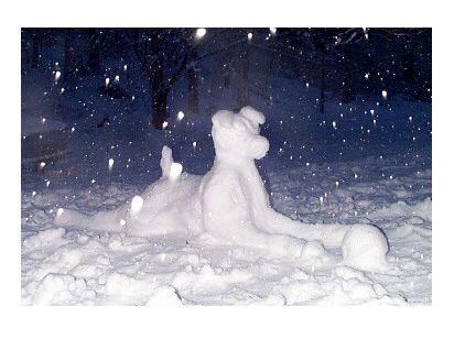 jack russell snow sphinx?