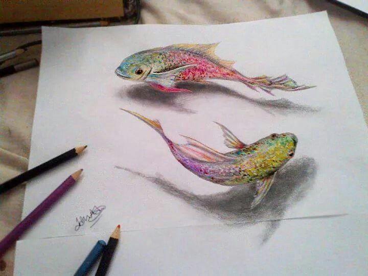 Swimming Fish スケッチ 3d絵画 魚 絵