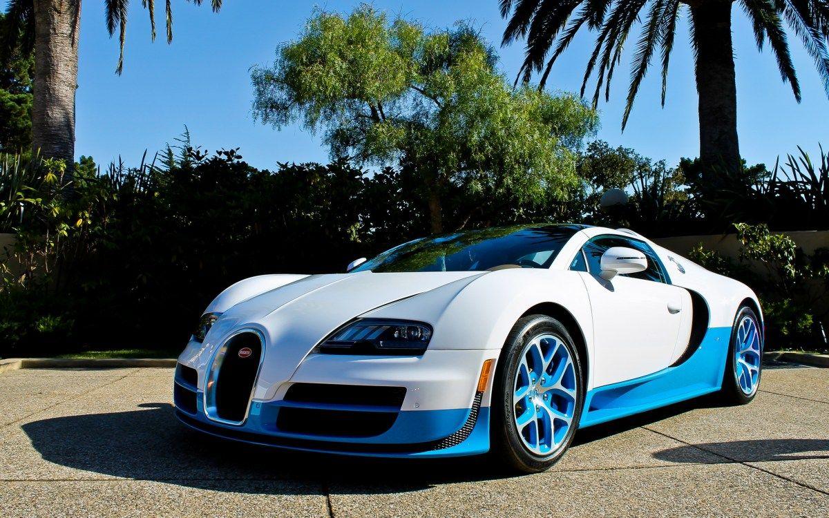 4k Wallpaper Bugatti Veyron Vitesse Blue Palm Trees Wallpapersinsta Bugatti Veyron Vitesse Bugatti Veyron Bugatti