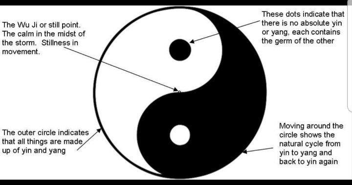 A Quiet Taoist Qinterests Twitter Yin Yang Yin Yang Meaning Yang