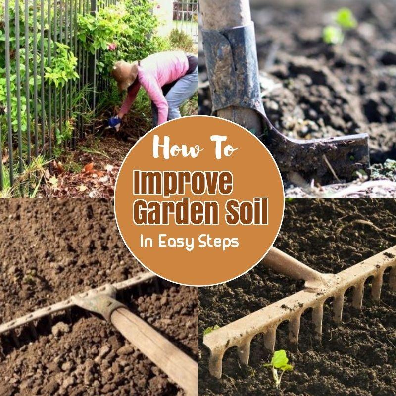 57e90ffa382ad12acca7e54d08b7a504 - How To Prepare Soil For Next Year Gardening