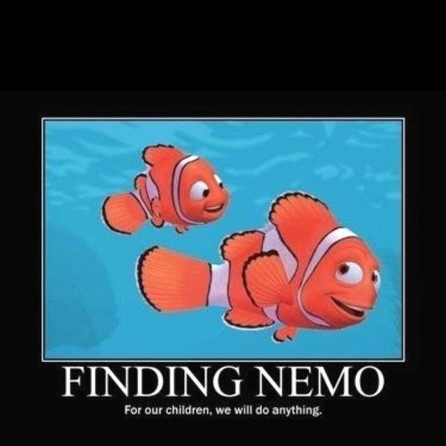 What Pixar Taught Me!
