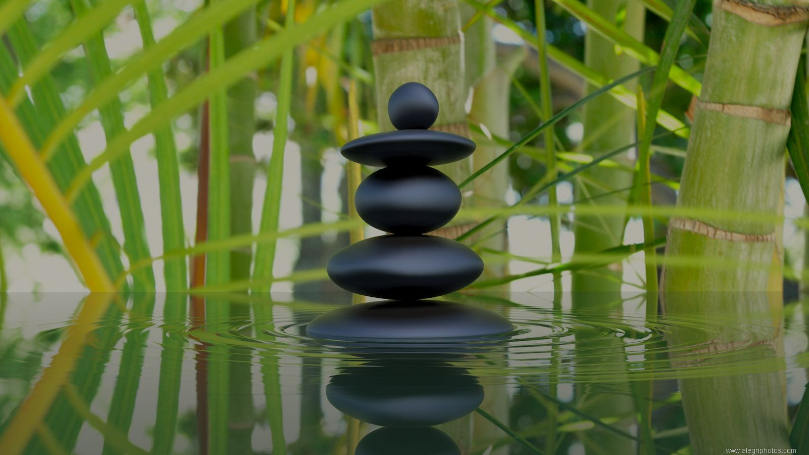 Hd wallpaper zen - Bamboo And Zen Stones Wallpaper Wallpaper Wide Hd