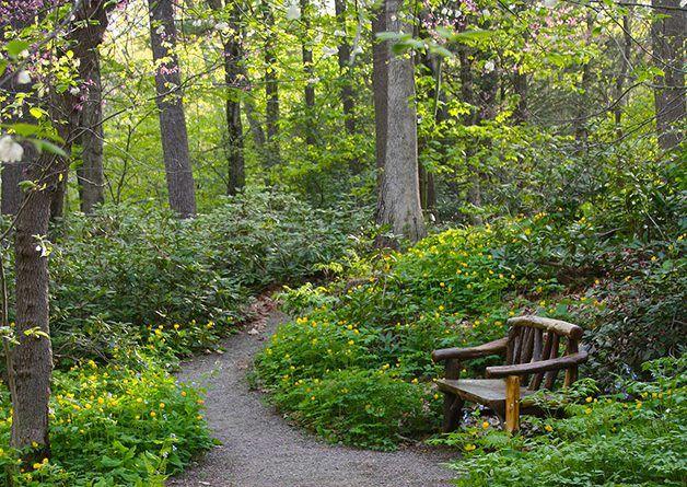 Framingham S Garden In Woods Re Opens Framingham Source In 2020 Garden In The Woods Framingham Woodland Garden