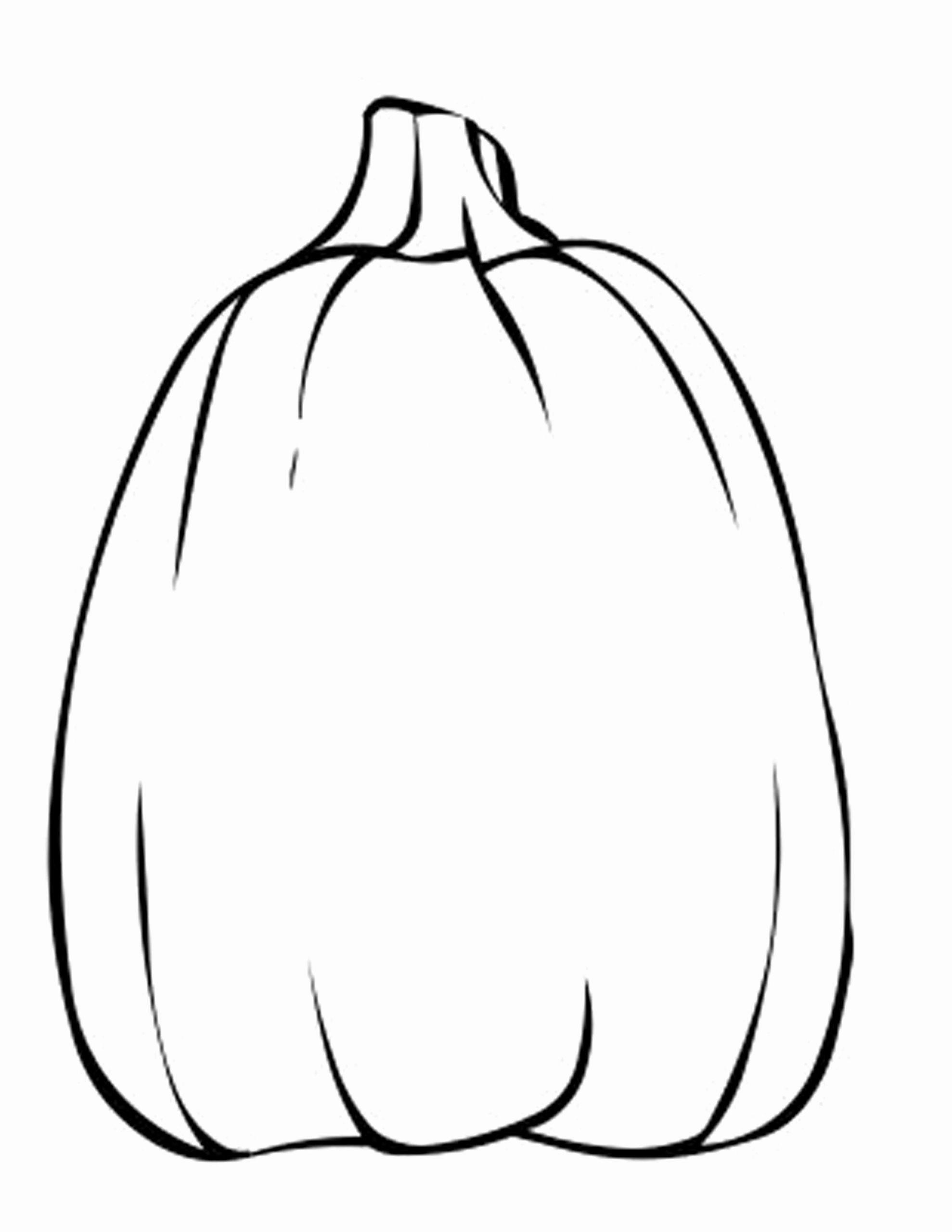Pumpkin Coloring Sheet Blank Designs Trend