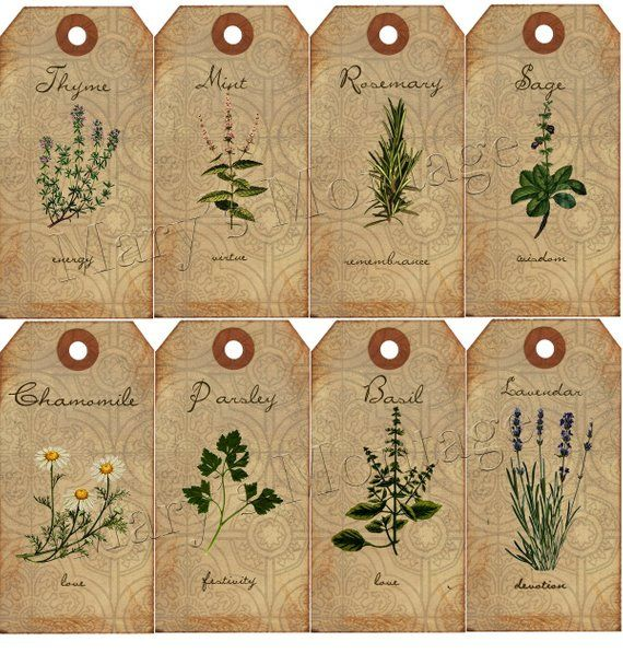 the language of Herbs tags/ download 85 x85 printable Products