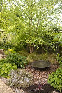 Plant Passion Garden 1 | by Scott Weber PDX