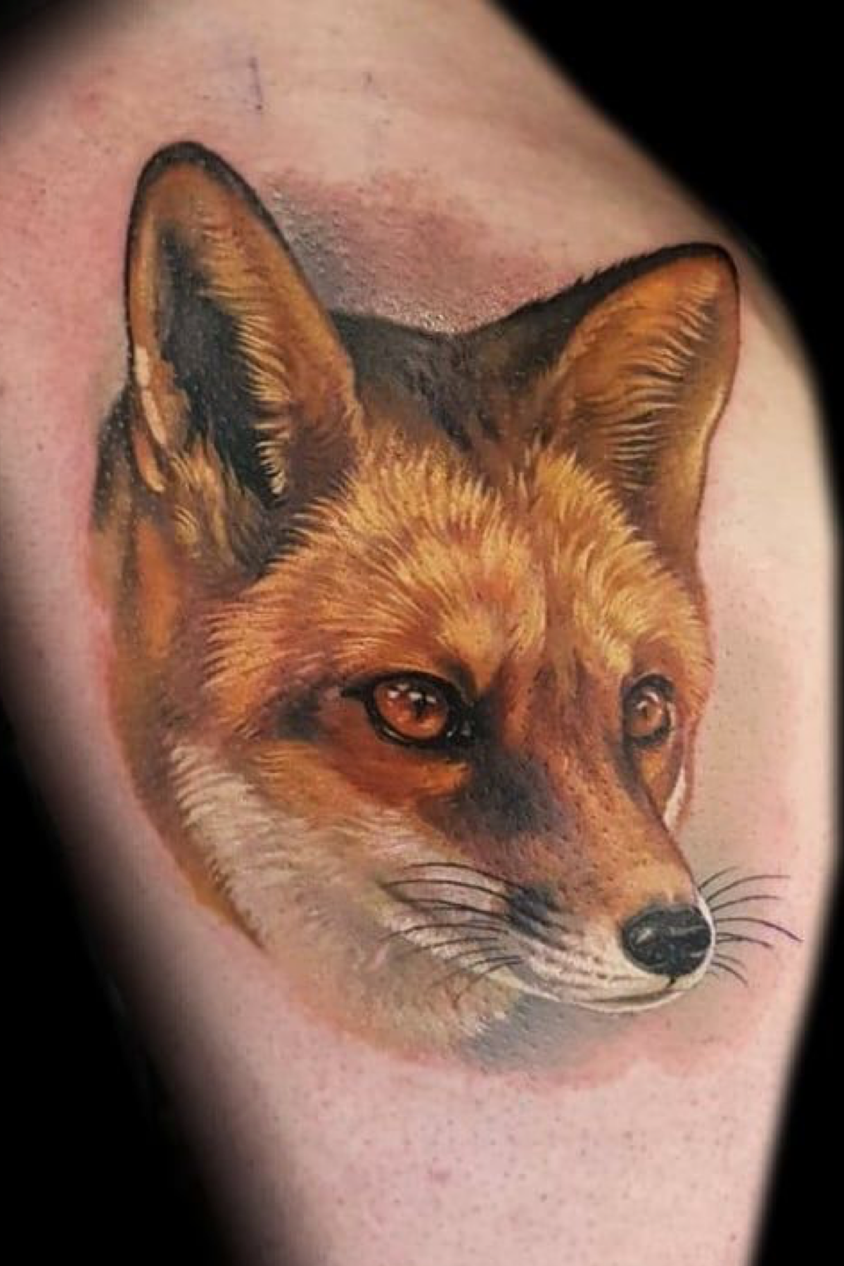 Realistic Fox Portrait Color Tattoo Made In Belgium By Giena Revess Leg Tattoo Wildlife Tattoo Animal Tattoos Animal Tattoo