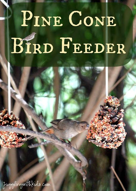 DIY pine cone bird feeder. A simple craft for kids to make for our feathered friends outside.