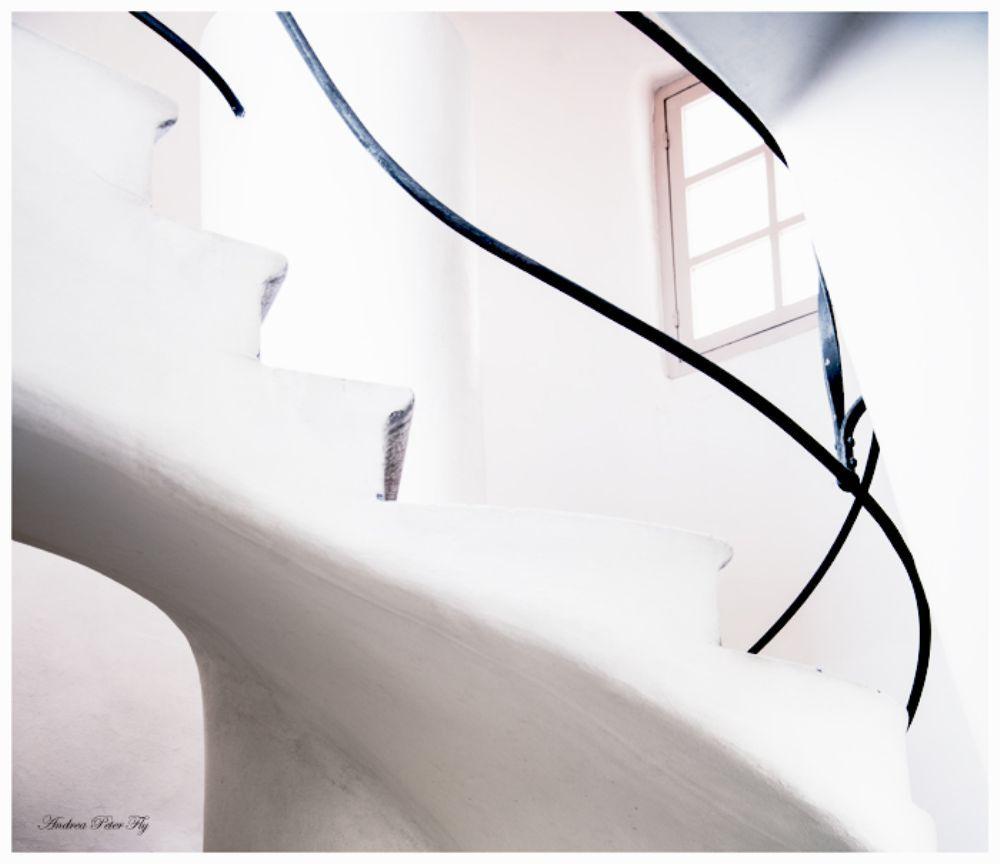 Casa Batllo by Andrea Peter Fly
