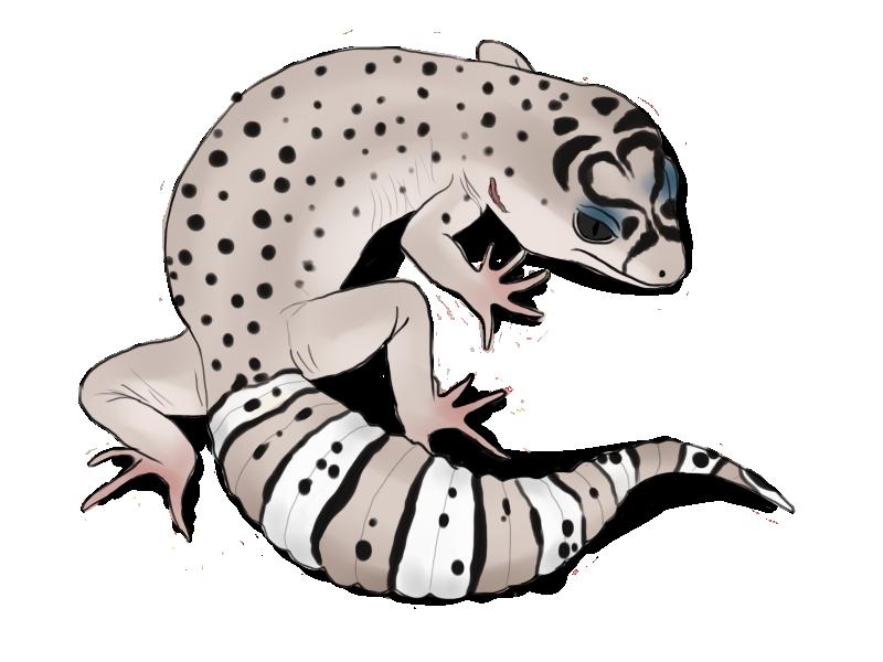 Sale Ss005 by Jasper-19 on DeviantArt | Gecko | Gecko tattoo