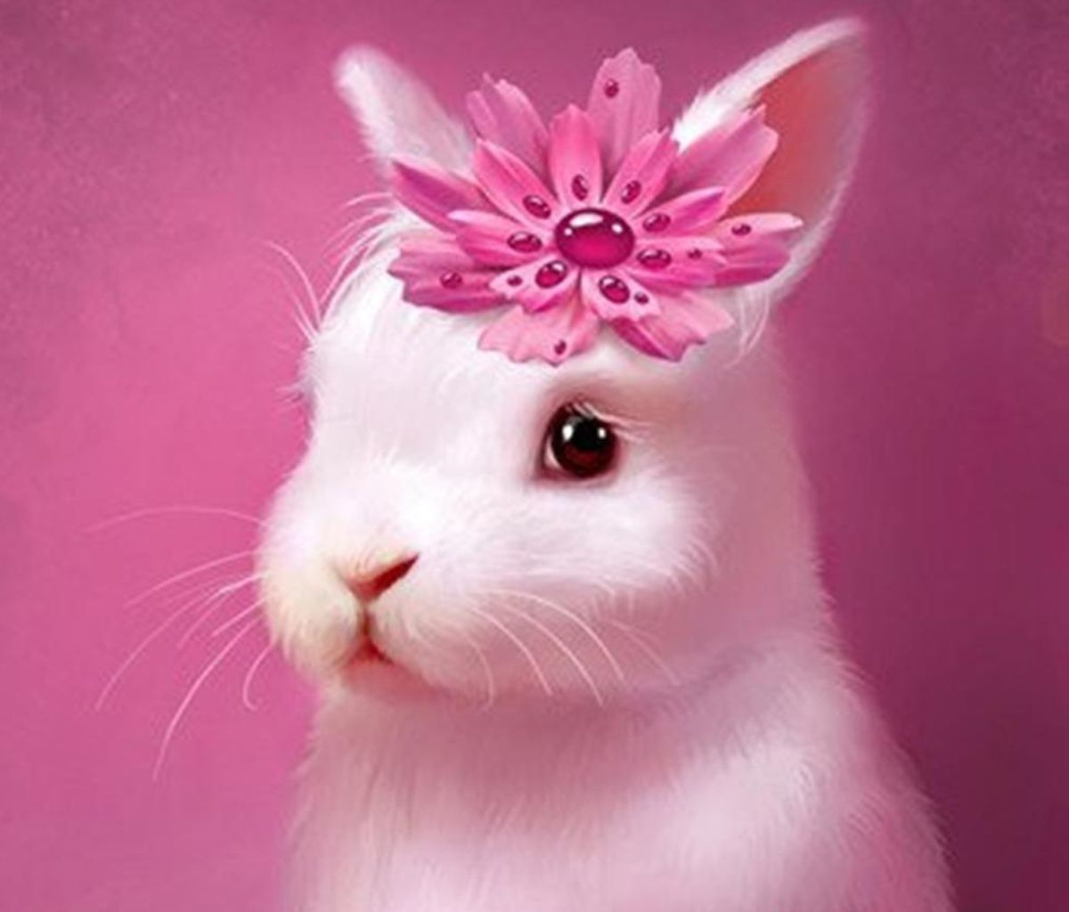 Pin By Lady Basil S Inspiring Colors On Spring Easter In Pink Cute Baby Bunnies Cute Bunny Cute Baby Animals