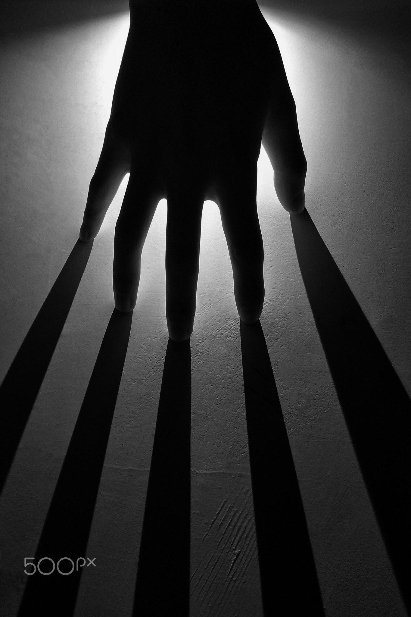 картинке с тенями стал жертвой