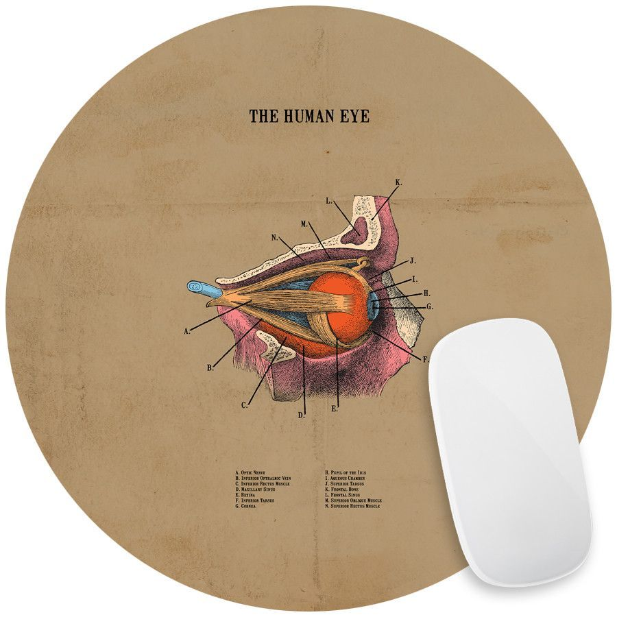 The Human Eye Mouse Pad Decal | Products | Pinterest | Human eye ...