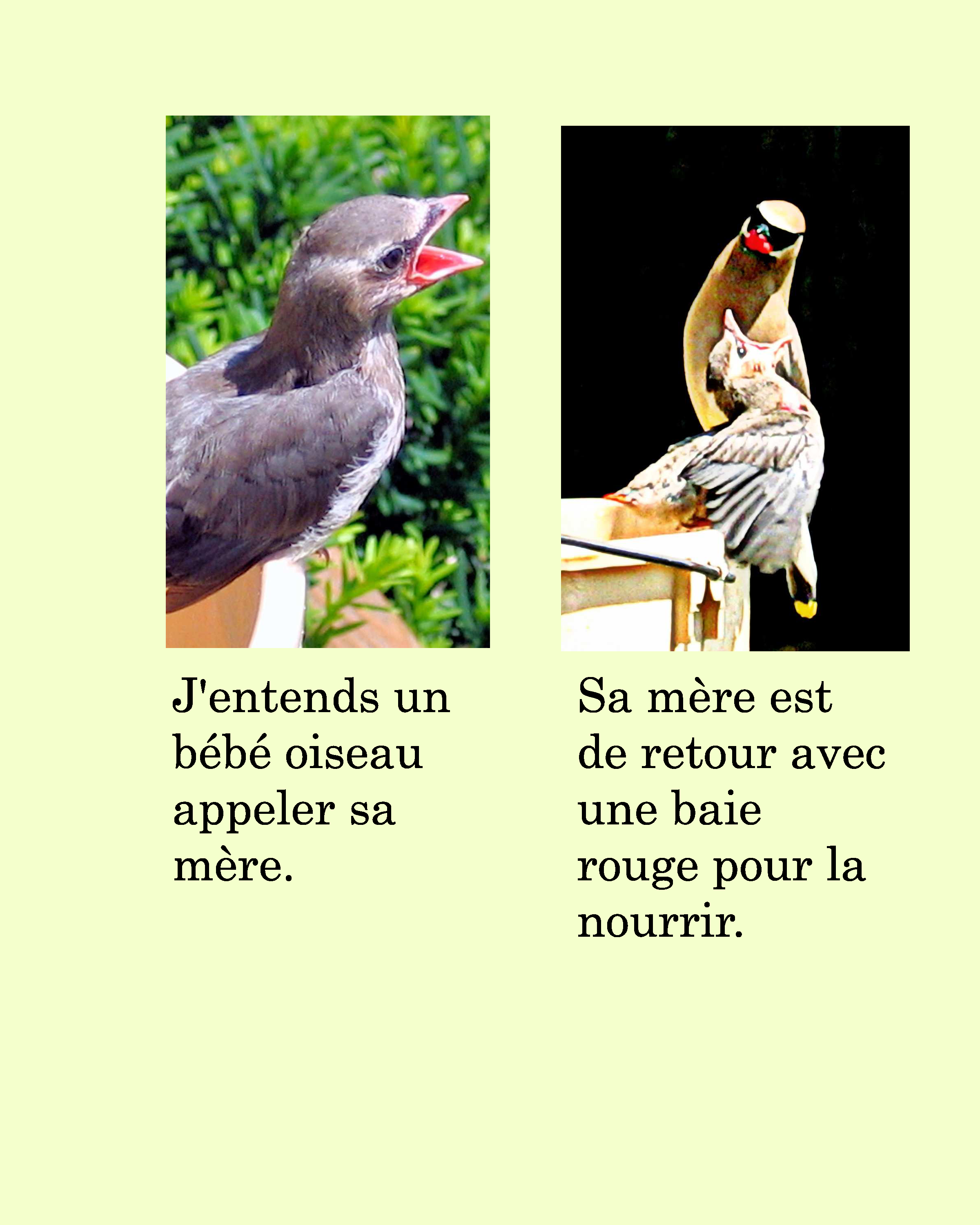 French Farm Story Ebook Plus Vocabulary Worksheets With