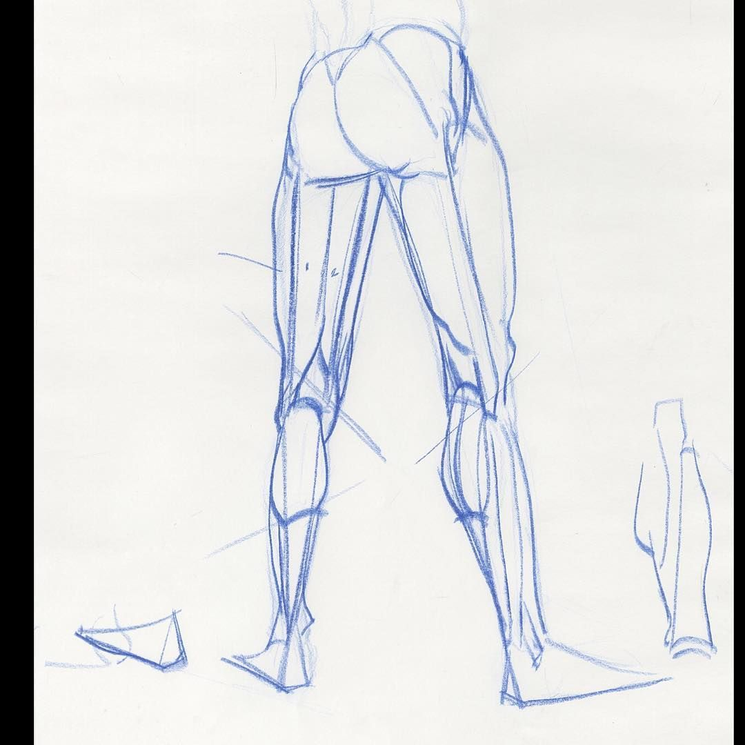 Legs! The back of the legs can be tough. #artcentercollegeofdesign ...