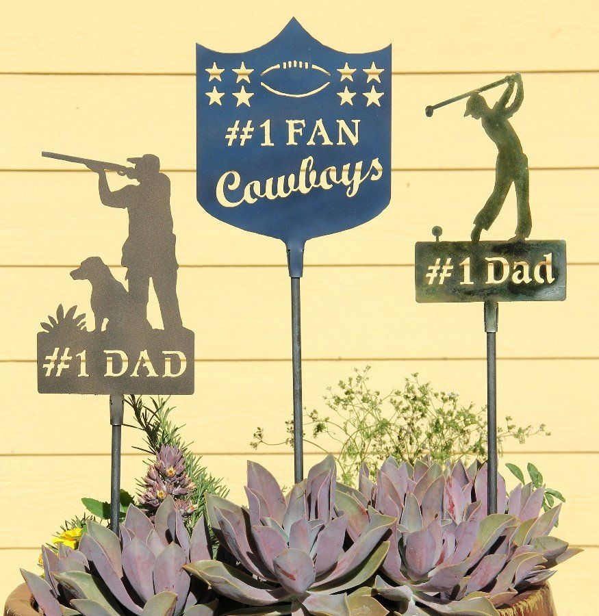 Cool Dad Gift: Fathers Day Gift: Home and Yard Decoration: Backyard ...