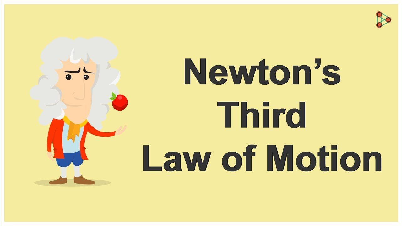 Physics Newton S Third Law Of Motion Youtube Newtons Second Law Newtons Third Law Of Motion Newtons Third Law