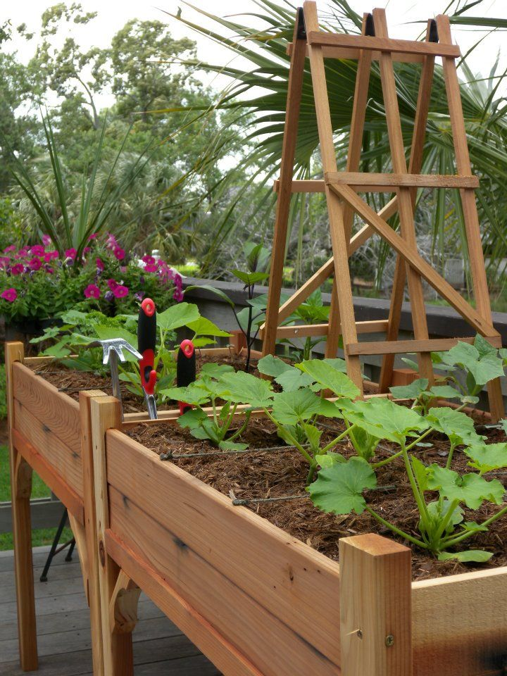Great Patio Idea Table Height Raised Beds Even A Small Trellis