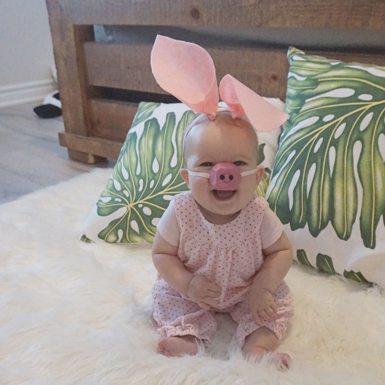 diy baby pig costume made from felt and an egg carton