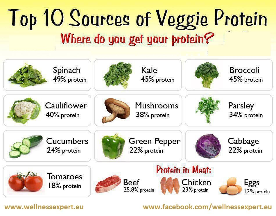 What Foods Are Good For Collagen And Elastin