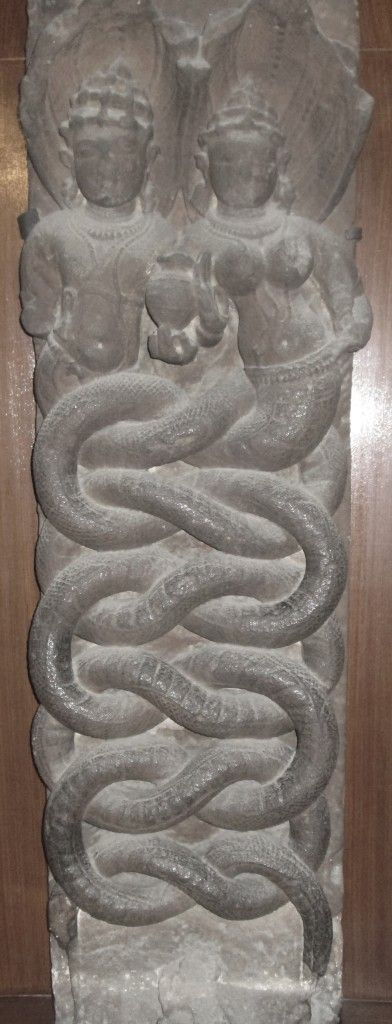 Image result for bharatkalyan97 serpent